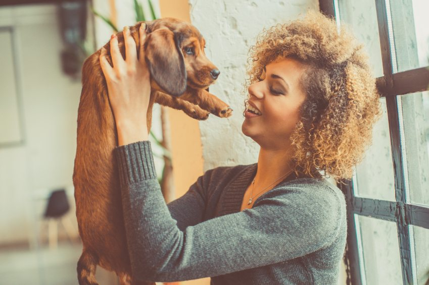Should You Get A Boyfriend Or A Dog? A Definitive Guide