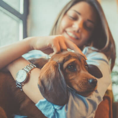 15 Reasons Dogs Are Better Than Boyfriends
