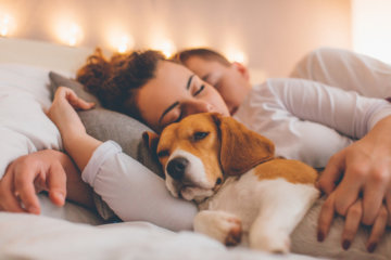 My Ex And I Stayed Together For Our Pets & It Was A Disaster