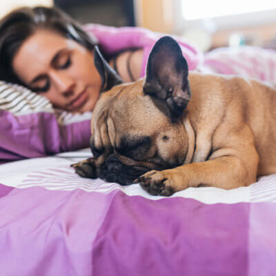 Sleeping With Your Dog Is Better Than Sleeping With A Guy, Science Says