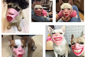 These Freaky Dog Masks Will Make Your Pup Look Like A Human
