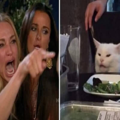 The 'Woman Vs. Cat' Meme Has A Pretty Dark History