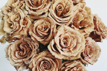 'Toffee' Roses Exist And Brown Flowers Have Never Been So Beautiful