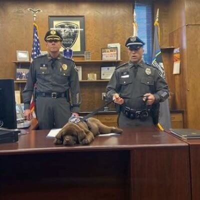 Lazy But Adorable Police Puppy Sleeps Through His Swearing In Ceremony