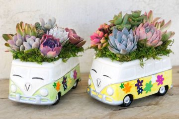 These Volkswagen Bus Succulent Planters Are Hippie Heaven For Your Garden
