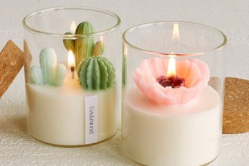 These Terrarium Plant Candles Are So Lifelike, You'll Think They're The Real Thing