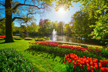 The World's Most Beautiful Flower Garden Needs To Be On Your Travel Bucket List