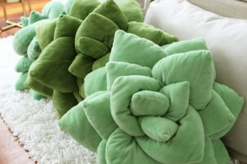 These Succulent Pillows Make It Possible To Cuddle With Your Plants