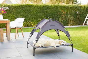 This Pet Bed Will Keep Your Furry Friends Cool In The Summer Heat