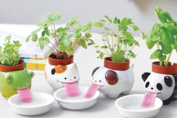 These Adorable Animal Planters Drink Water On Their Own To Keep Your Plants Alive And Happy