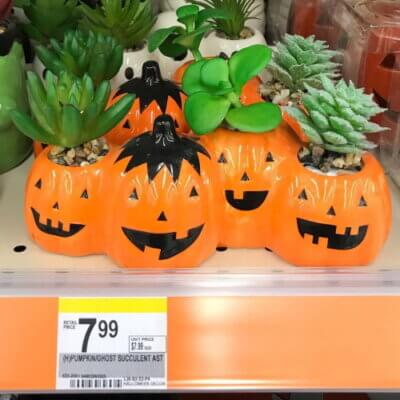 Walgreens Is Selling Pumpkin And Ghost Succulent Planters For Halloween