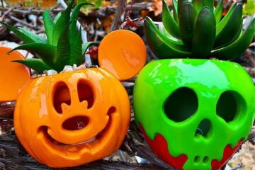 These Disney Halloween Succulent Planters Light Up For A Spooky Glow