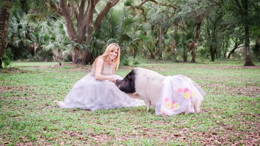 Florida Woman Launches Pig Clothing Company After Her Pig Outgrows Dog Outfits