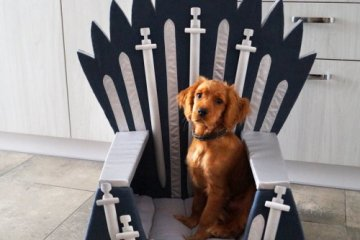 This Iron Throne Pet Bed Will Allow Your Furry Friend To Rule The Seven Kingdoms